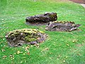 Innisfree Garden, Millbrook, NY - IMG 1604.jpg