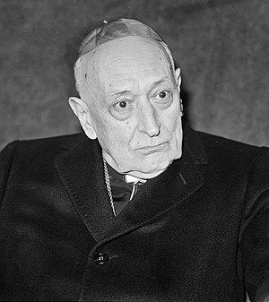 József Mindszenty - József Mindszenty in 1974