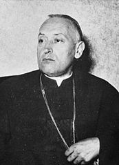 József Mindszenty