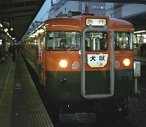 Shiosai - 165 series EMU on a special Inubō revival working in November 2002