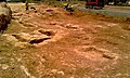 Jaciment de la carretera de Sant Miquel - panoramio (3).jpg