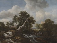 Jacob van Ruisdael - Low Waterfall in a Wooded Landscape with a Dead Beech Tree - 1967.63 - Cleveland Museum of Art.tiff