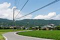 Japanese Summer (14646910072).jpg