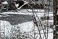 Jardin naturel (Paris) sous la neige 23.jpg