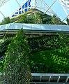 Jardin vertical5.jpg