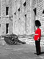 Jewel House guard B&W.jpg