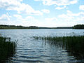 Jezioro Brzozolasek.jpg