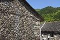 Jinyun, Lishui, Zhejiang, China - panoramio - 梅白 (12).jpg