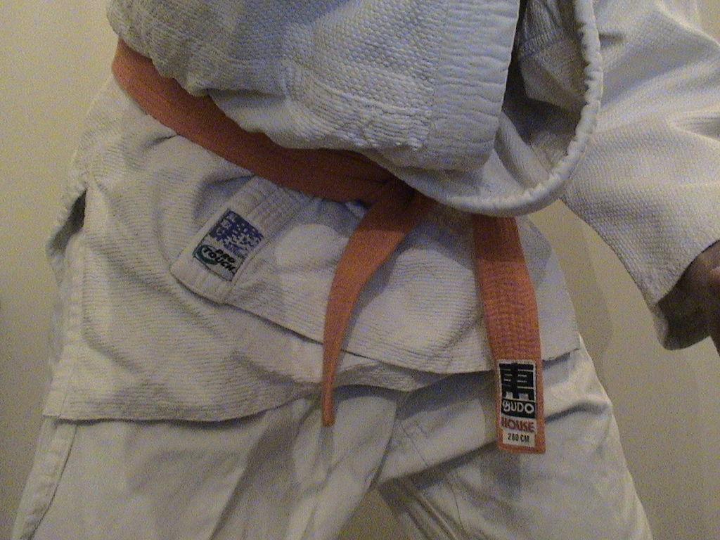 Judo orange belt (Brusselsshrek)