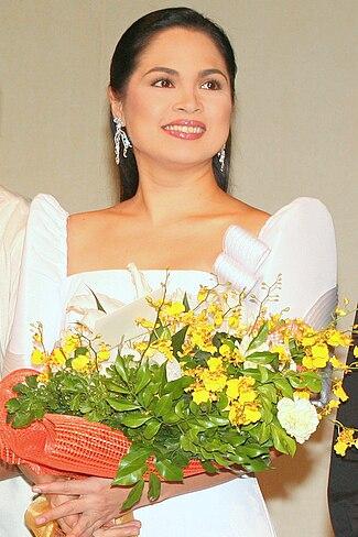 Judy Ann Santos (2008)