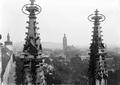 Křížová kytka, chrám sv. Barbory, KH.png