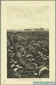 KITLV - 37426 - Demmeni, J. - Tulp, De - Haarlem - Tobacco plantation, Deli - 1911.tif