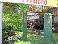 Katowice, ogród, ul. Warszawska 37 02.JPG
