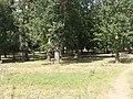 Kiseljak, Smederevska Palanka 128.jpg