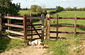 Kissing gate on footpath north of canal bridge 89, Braunston - geograph.org.uk - 1483894.jpg