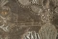 Kjol till hertiginnan Hedvig Elisabeth Charlottas (1759-1818) brudklänning 1774. Detaljbild - Livrustkammaren - 86964.tif