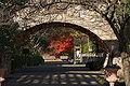 Kobe Suma Rikyu Park12s4592.jpg