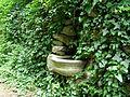 Kochova záhrada03.JPG