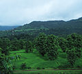 Konkan Railway - views from train on a Monsoon (20).JPG