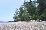 Kopachuck State Park beach, 03.jpg