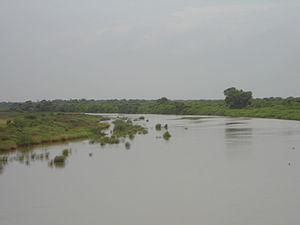Koringa River - Koringa River at Tallarevu village during monsoon