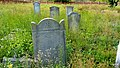 Koronowo - cmentarz ludności żydowskiej - panoramio (6).jpg