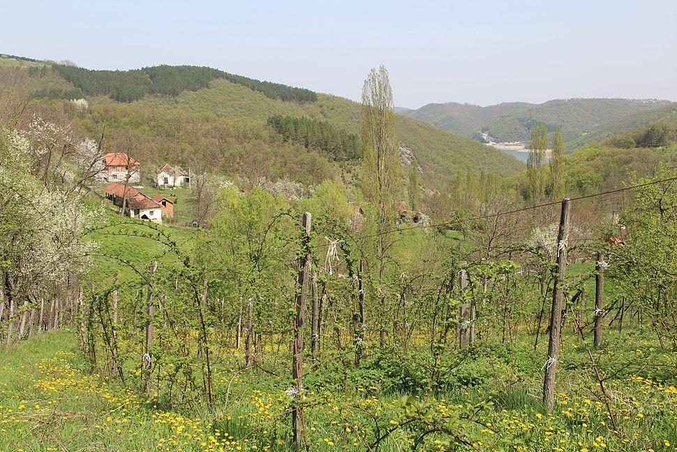 Kunice - opština Valjevo - zapadna Srbija - panorama 19