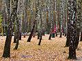 Kyiv Sovky Park10.JPG
