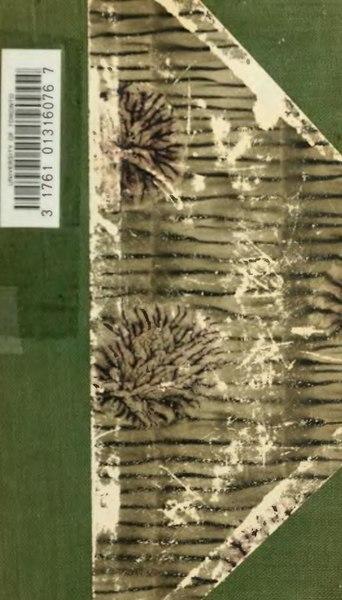 File:Léonard de Vinci - 14 manuscrits.djvu