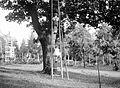 Ladder Fortepan 1205.jpg