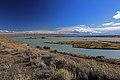 Lago Viedma - panoramio.jpg