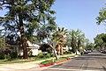 Lake Balboa, Los Angeles, CA, USA - panoramio (6).jpg