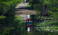 Lake Miccosukee.jpg