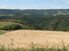 Landscape-IMG 7134.JPG