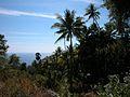 Landscape in East Timor.jpg