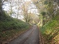 Lane at Ryton - geograph.org.uk - 1151963.jpg