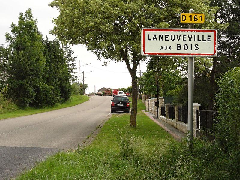 Laneuveville-aux-Bois (M-et-M) city limit sign D 161