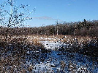 Lawrence, Rusk County, Wisconsin - Much of Lawrence is wild land, accessed only by hunters and winter loggers who drive in over frozen swamps.