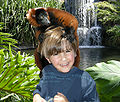 Lemur and boy.jpg