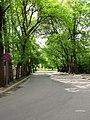 Liepajas iela - panoramio.jpg