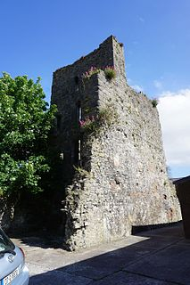 Fannings Castle ruined tower house in Limerick, Ireland
