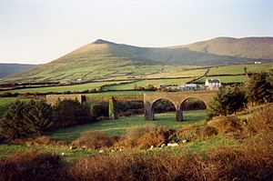 Tralee and Dingle Light Railway - Lispole viaduct
