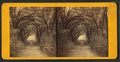 Live Oak Avenue, Bonaventure, from Robert N. Dennis collection of stereoscopic views 4.png