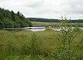Loch Dornal - geograph.org.uk - 476107.jpg