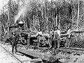 Logging crew and railroad, Snohomish County, Washington, 1896 (INDOCC 342).jpg