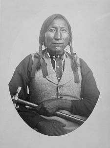 Lone Wolfe (Guipago), a Kiowa chief, half-length, seated, 1868 - 1874 - NARA - 518903.jpg