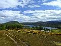 Looking towards Loch Migdale - geograph.org.uk - 437287.jpg