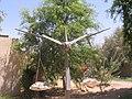 Lotan Scrap metal & local stone sculpture (1257978450).jpg