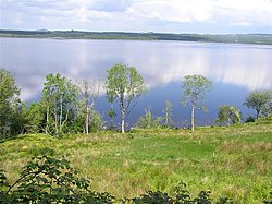 Lough Melvin - geograph.org.uk - 825848.jpg