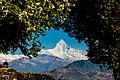 Machhapuchchhre Himal.jpg
